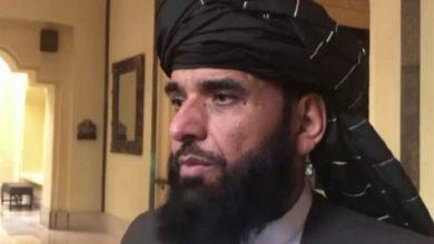 تصویر از دفتر سیاسی طالبان: توافق مخفی با آمریکا نداشتهایم