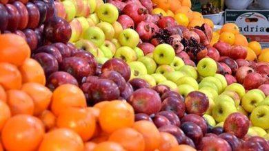 تصویر از آغاز عرضه میوه تنظیم بازاری شب عید