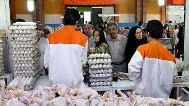 تصویر از قیمت مرغ و تخم مرغ کاهش یافت