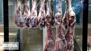 تصویر از سالانه ۸۵۰ هزار تن گوشت قرمز در کشور تولید میشود