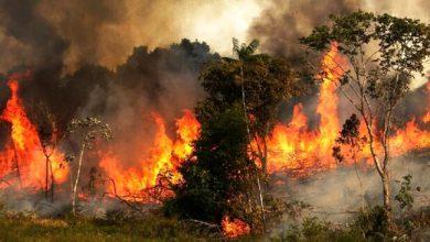 """تصویر از """"خائیز"""" همچنان در آتش میسوزد؛ به بالگرد نیاز داریم"""