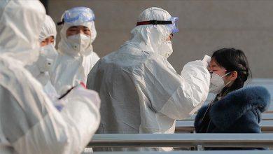 تصویر از شناسایی یک ویروس جدید در چین با قابلیت «همهگیری جهانی»