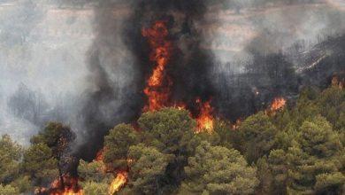 تصویر از جنگلهای پاوه همچنان در آتش میسوزد