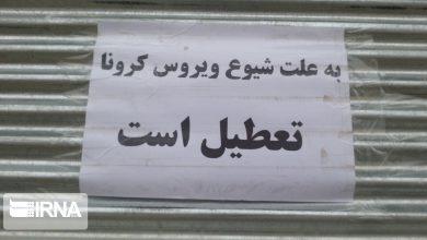 تصویر از روحانی تاریخ بازگشایی مهدکودکها، سینماها و آرامستانها را اعلام کرد