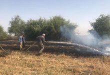 Photo of وقوع حریق در جنگل های منطقه «بلوط بلند» چهارمحال و بختیاری
