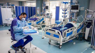 تصویر از کدام بیماران کرونایی بیشتر در آی سی یو بستری هستند