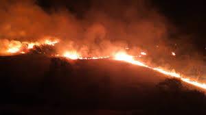 تصویر از آتشسوزی در کوههای گیسکان بوشهر