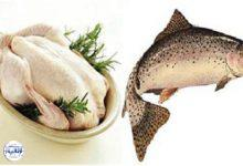 تصویر از نرخ هر کیلو مرغ ۲۵ هزار تومان شد| افزایش ۱۰۰درصدی قیمت ماهی