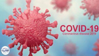تصویر از اقدامات احتیاطی برای پیشگیری از کرونا در دورهمیهای کوچک